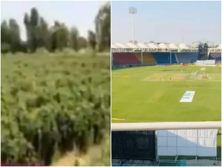 Cricket Stadium In Pakistan Now Being Used To Grow Chillies & Pumpkins - Watch Video
