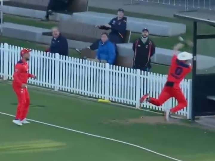 Watch: Viral Video Of Three South Australia Fielders Trying To Grab Bizarre Catch Vs Queensland